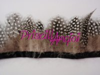 Guinea Fowl Feather Fringe - 10 cm
