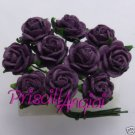 Rosa purpura 10 mm (10 uds)